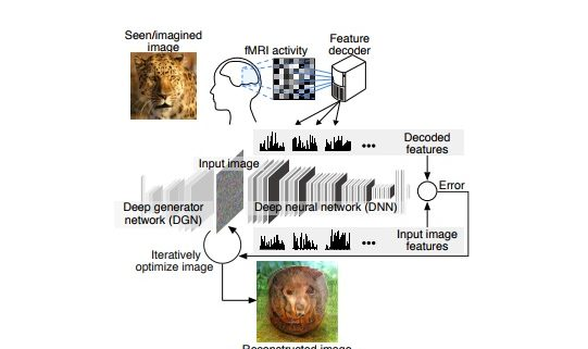 You think it and a robot sees it: The future is here with mind-reading AI